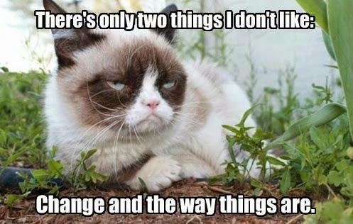 change-cat